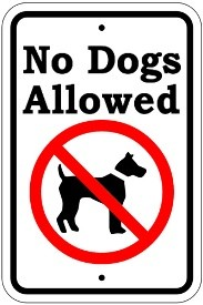 "18"" x 12"" No Dogs Allowed"